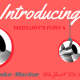 Mercury Fury 4 - Silver Lake Marine